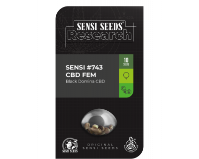 Sensi #743 Black Domina CBD (Sensi Research) feminized